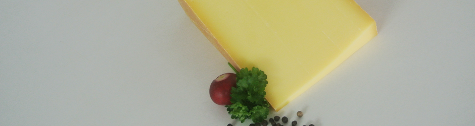 Frischer Bio-Käse aus Kuhmilch, Ziegenmilch oder Schafsmilch.
